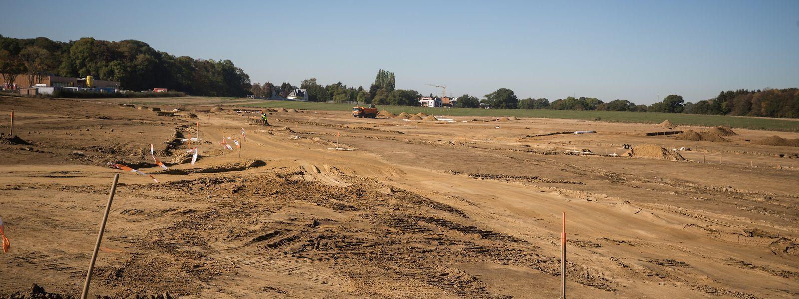 Beeindruckend wirkt die Größe der Fläche, auf der Elmen entsteht. Die Vorarbeiten sind Planier-, keine Aushubarbeiten, da die Gebäude kaum unterkellert werden. Dies um Bauschutt zu vermeiden.