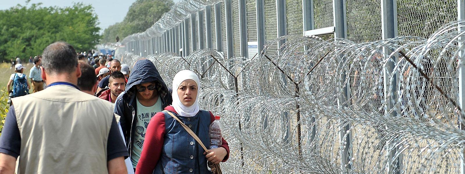 Wie hier an der Grenze zu Serbien, soll ebenfalls an der ungarisch-rumänischen Grenze ein Zaun entstehen.