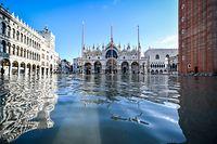 14.11.2019, Italien, Venedig: Der Dogenpalast spiegelt sich im Hochwasser auf dem Markusplatz. Der italienische Zivilschutz warnte vor neuen Unwettern mit starkem Wind in der Region Venetien. Der Wasserstand sollte allerdings bei weitem nicht das Rekord-Niveau wie in der Nacht zu Mittwoch erreichen. Foto: Claudio Furlan/LaPresse via ZUMA Press/dpa +++ dpa-Bildfunk +++