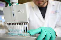 ARCHIV - 24.02.2020, Baden-Württemberg, Tübingen: Ein Mann pipettiert in einem Labor des biopharmazeutischen Unternehmens Curevac eine blaue Flüssigkeit. In dem Unternehmen wird nach einem Impfstoff gegen das Coronavirus geforscht. (zu dpa «Impfstoff-Hersteller Curevac macht weiteren Schritt zur Zulassung») Foto: Sebastian Gollnow/dpa +++ dpa-Bildfunk +++