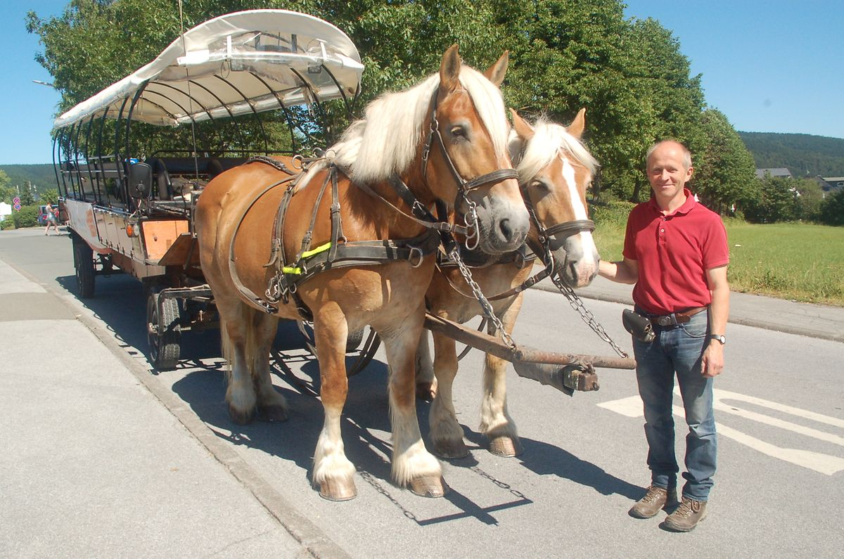 Planwagenkutscher Hartmut mit den Pferden Rosalie und Nelly.