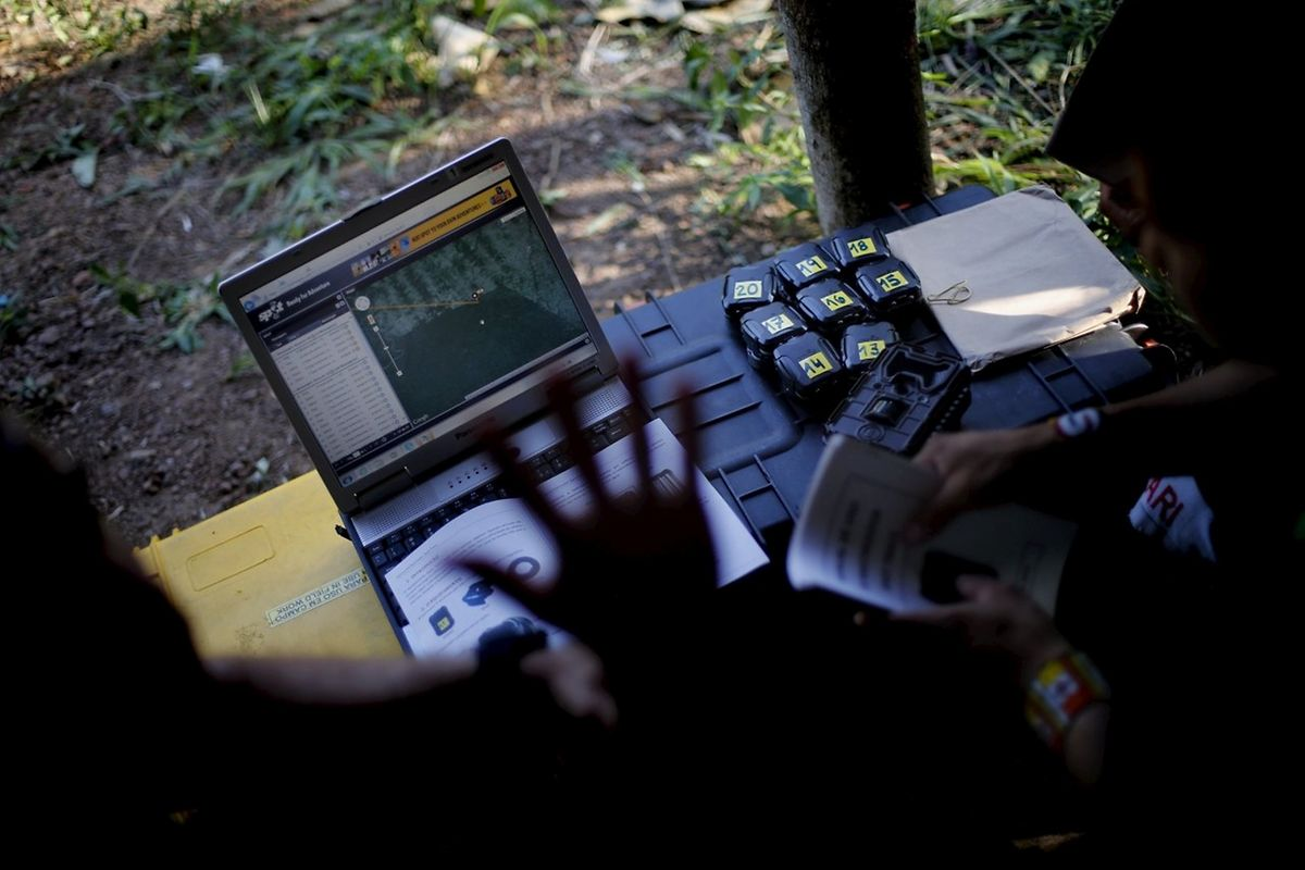 Die Kameras sind mit Satelliten verbunden, die wiederum ihre Daten an einen Rechner im Alto Turiacu-Gebiet liefern.