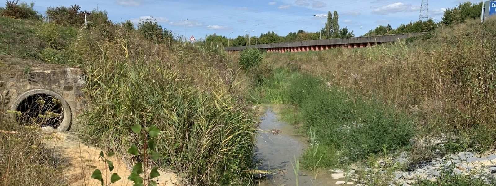 Sauber ist anders: Das Abflussrohr der Industriezone Monkeler mündet in den Kiemelbach.