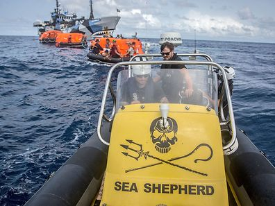 "This handout photograph received from Sea Shepherd Global on April 7, 2015 shows the Sea Shepherd small boat towing a convoy of liferafts from the Nigerian-flagged boat Thunder following its sinking in the waters of Sao Tome and Principe, an island nation off the coast off Africa's eastern coast, on April 6, 2015.Environmental activist group Sea Shepherd said it rescued 40 crew members from a sinking ""poaching"" ship it was pursuing for months for allegedly illegally fishing in the Southern Ocean, but described the ship's sinking as suspicious. AFP PHOTO / JEFF WIRTH / SEA SHEPHERD GLOBAL   ---- EDITORS NOTE ----- RESTRICTED TO EDITORIAL USE AFP PHOTO / MANDATORY CREDIT: ""AFP PHOTO / JEFF WIRTH / SEA SHEPHERD GLOBAL"" NO MARKETING NO ADVERTISING CAMPAIGNS - DISTRIBUTED AS A SERVICE TO CLIENTS - NO ARCHIVES"