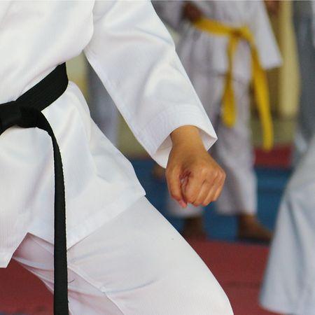 The Taekwondo Centre Luxembourg has regular training sessions Photo: Shutterstock