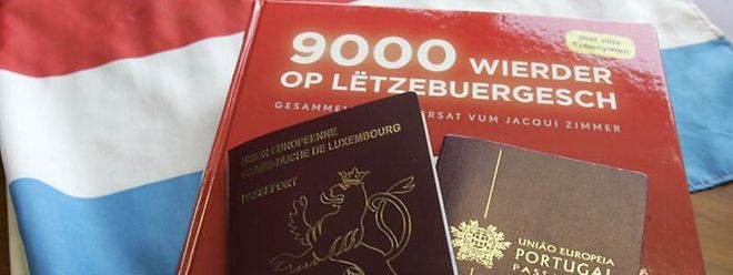 Os testes de Luxemburguês são a grande questão fracturante na proposta do Governo para facilitar o acesso à nacionalidade
