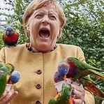 Foto de Merkel com papagaios torna-se viral