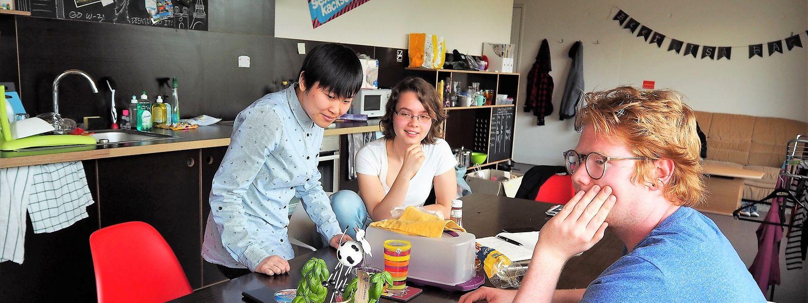 Studenten-WGs, wie hier in Belval, bleiben weiterhin in Esch in Appartementhäusern möglich. In Einfamilienhäusern ist dies derzeit aber nicht möglich.