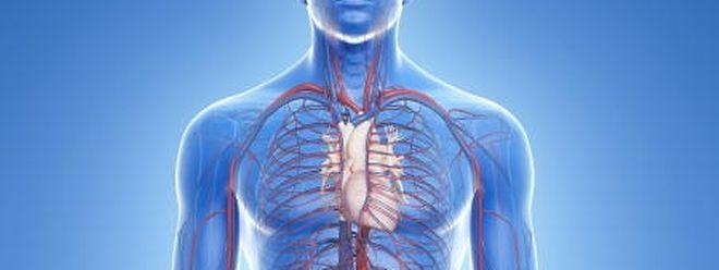 Bauchaortenaneurysma: Zeitbombe im Bauch