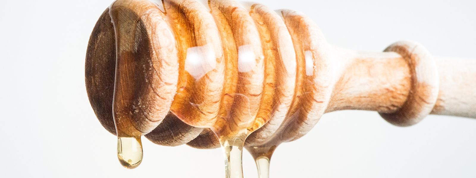 Feiner Süßmacher:Honig enthält hauptsächlich Zucker, ist aber ein klein wenig kalorienarmer als Industriezucker.