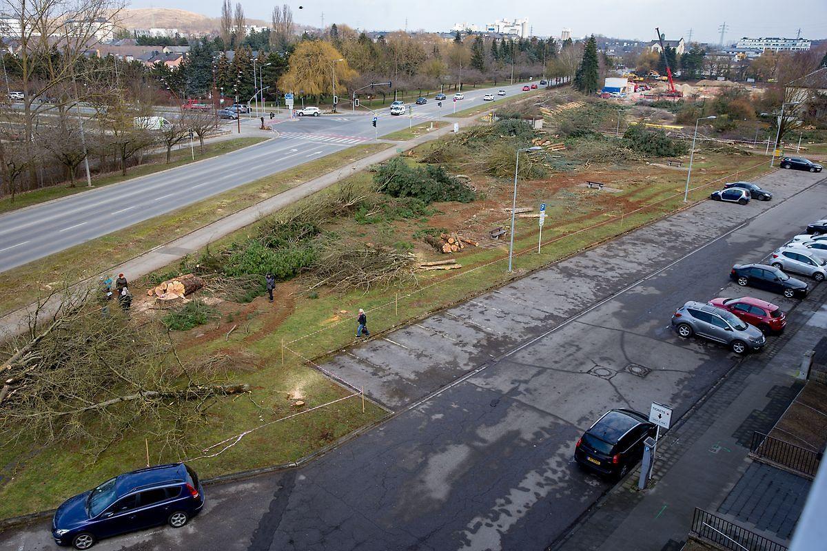 L'actuel Boulevard Grande-Duchesse Charlotte, à Esch-sur-Alzette, serait assez large pour accueillir le tram rapide, selon Frank Vansteenkiste.