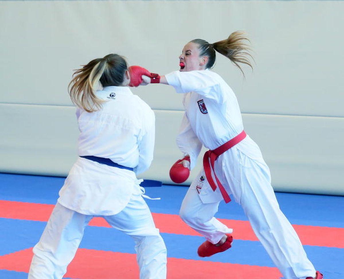 Le karaté fait partie des 29 discipines que gère la Fédération luxembourgeoise des arts martiaux.