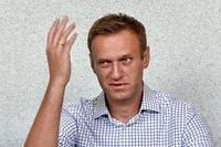 "(FILES) In this file photograph taken on June 24, 2019, Russian opposition leader Alexei Navalny attends a hearing at a court in Moscow. - Russia's jailed opposition politician Alexei Navalny might have been exposed to an unidentified ""toxic agent,"" his personal doctor said July 29, 2019, while health officials insisted his condition was satisfactory. (Photo by Vasily MAXIMOV / AFP)"