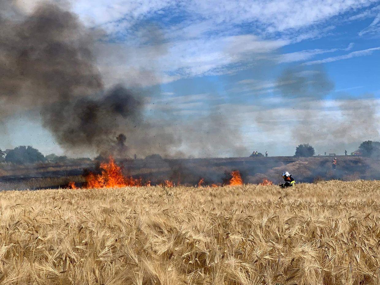 Zwischen Schüttringen und Canach brannte am Samstag gegen 17.16 Uhr etwa ein Hektar eines Feldes.