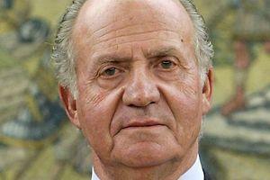 Der spanische König Juan Carlos ist nach einer Elefantenjagd in Botsuana gestürzt und hat sich die Hüfte gebrochen.