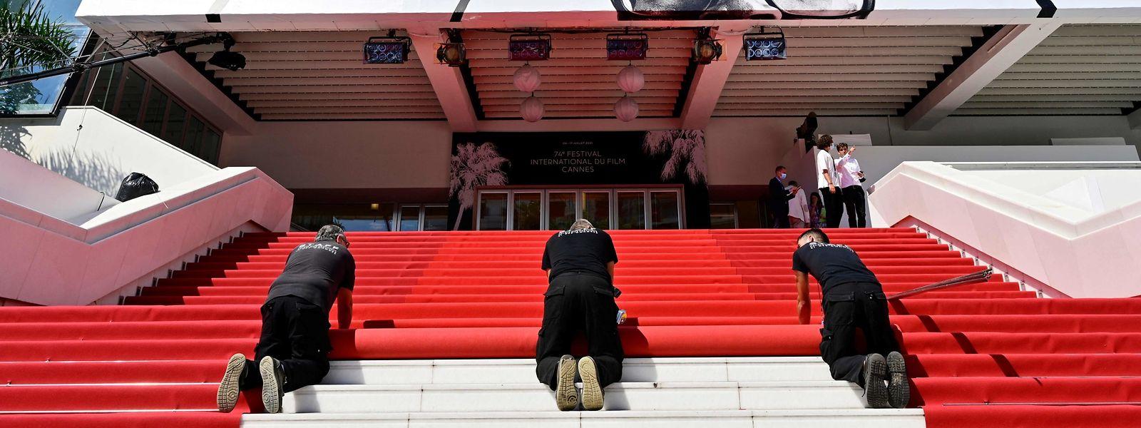 Es kann losgehen. Die Treppen sind mit dem Roten Teppich ausgelegt. Die Filmfestspiele in Cannes können beginnen.