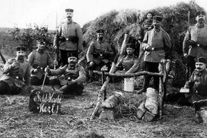 Deutsche Soldaten haben Quartier bezogen in den Merler Wiesen.