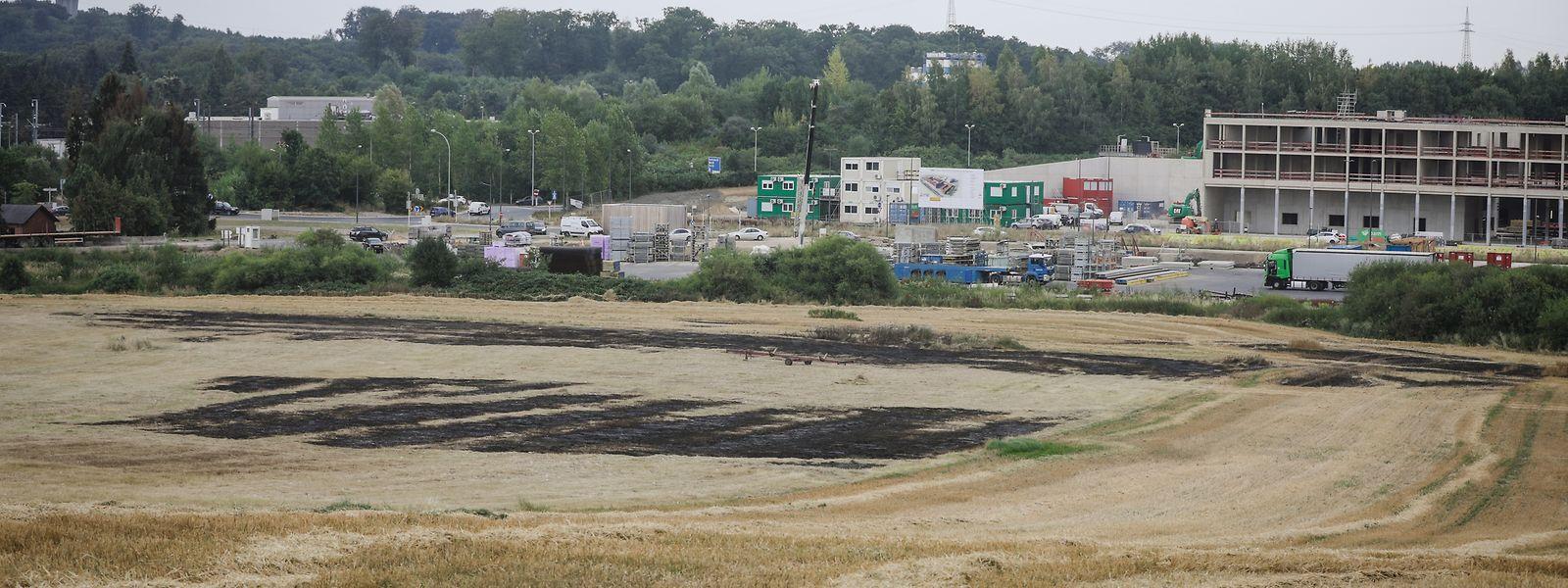 Die Spuren vom Flächenbrand auf einem Feld in Gasperich am Mittwoch sind deutlich zu sehen.