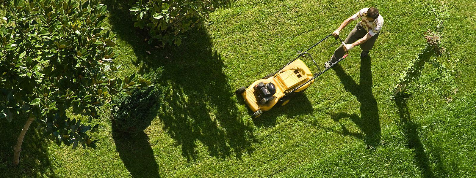 Das Rasenmähen zählt zu den Arbeiten im Atelier. Dabei können die Betroffenen auf Anhieb ein Resultat sehen.