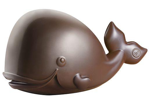 Paulo, le baleineau à la chocolaterie Weiss