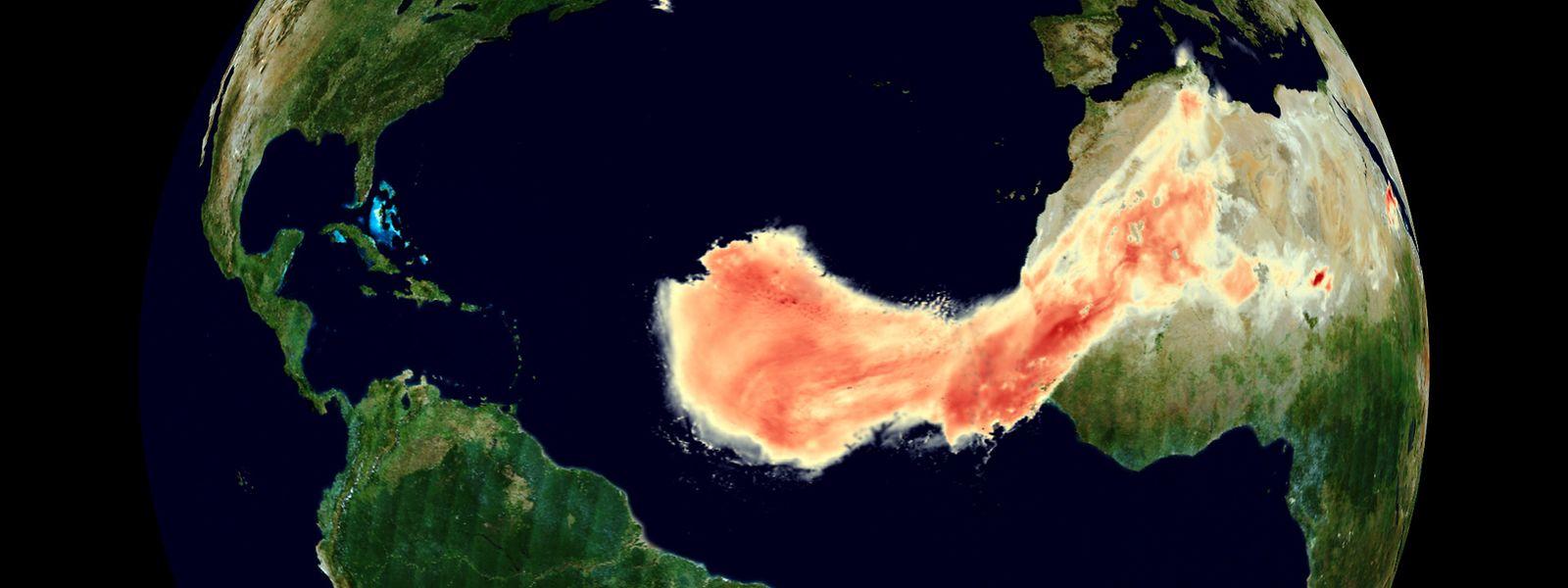 """Die gigantische Staubwolke, die auch den Namen """"Godzilla"""" trägt, erreichte Ende Juni die Karibik und die USA."""