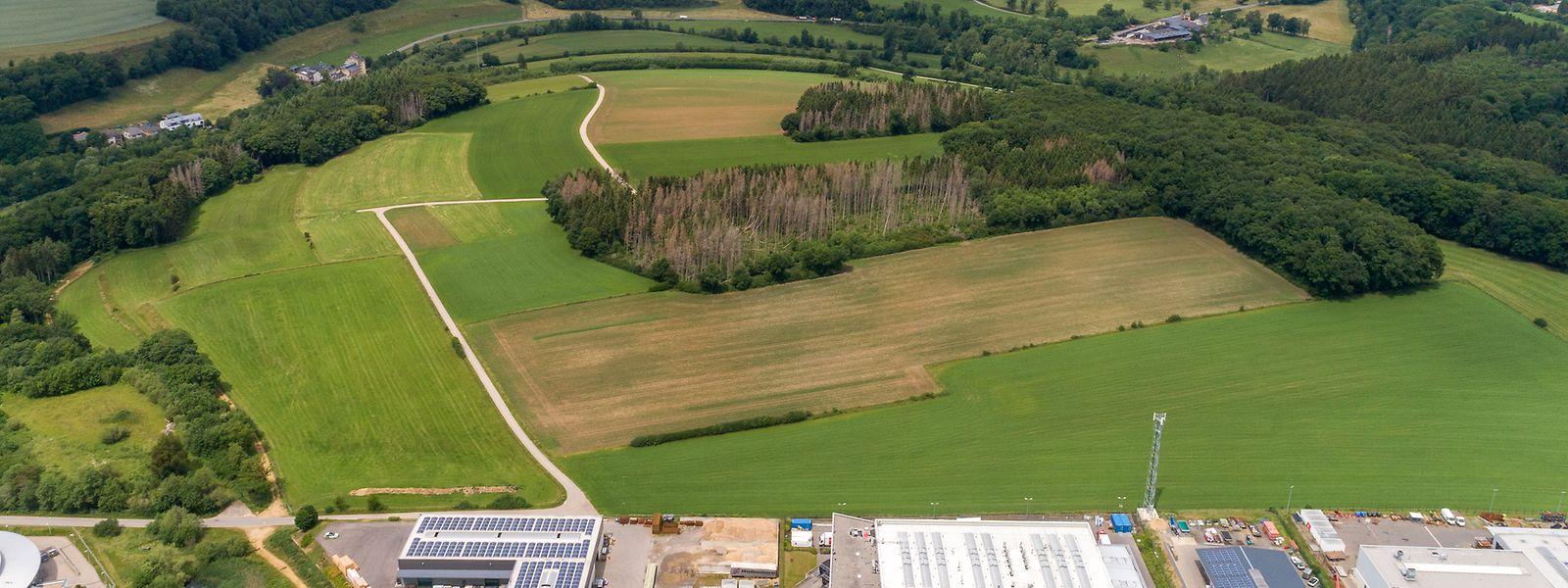 Auf 32,33 Hektar soll ein Rechenzentrum entstehen.