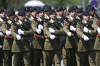 Nationalfeiertag 2019. Prises d'Armes, Militärparade, Boulevard JF Kennedy, Militär, Armee, Foto: Guy Wolff/Luxemburger Wort