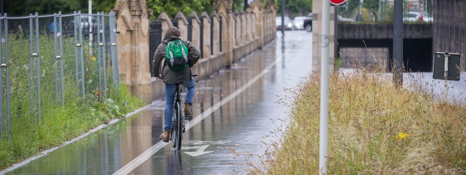 Nicht nur besseres Wetter sondern auch sicherere und schönere Radwege sollen den Heimaturlaub im August attraktiver machen.