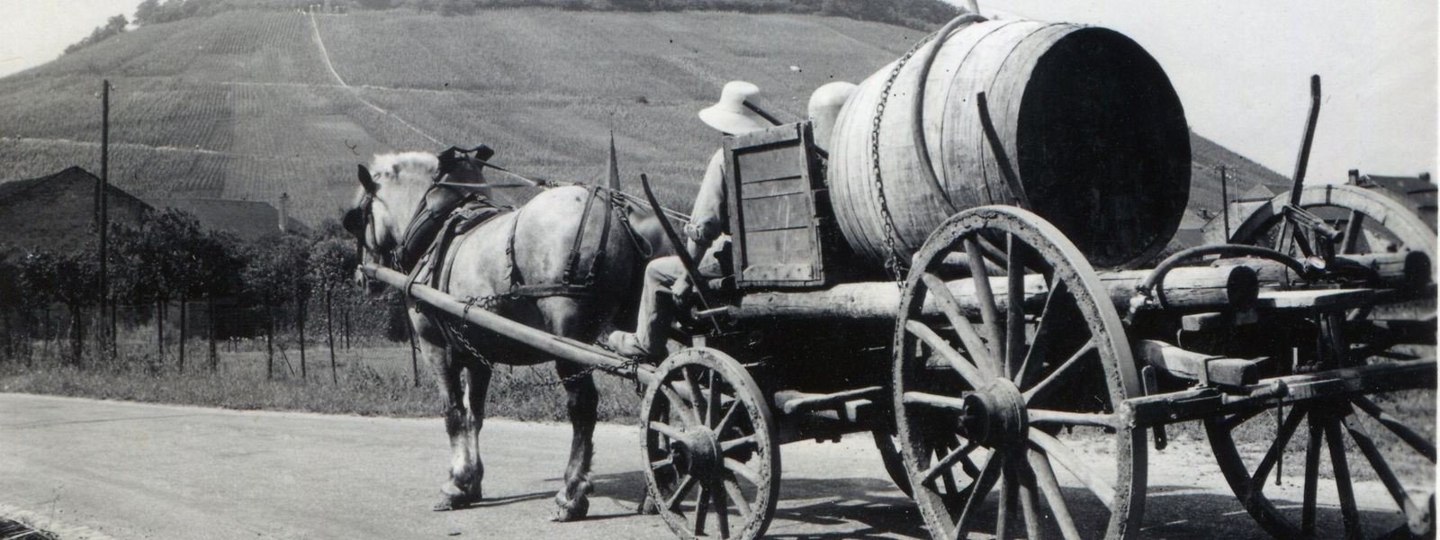 In den Archiven der Familie befinden sich zahlreiche Fotos, die zeigen, wie Wein vor vielen Jahren hergestellt und transportiert wurde.