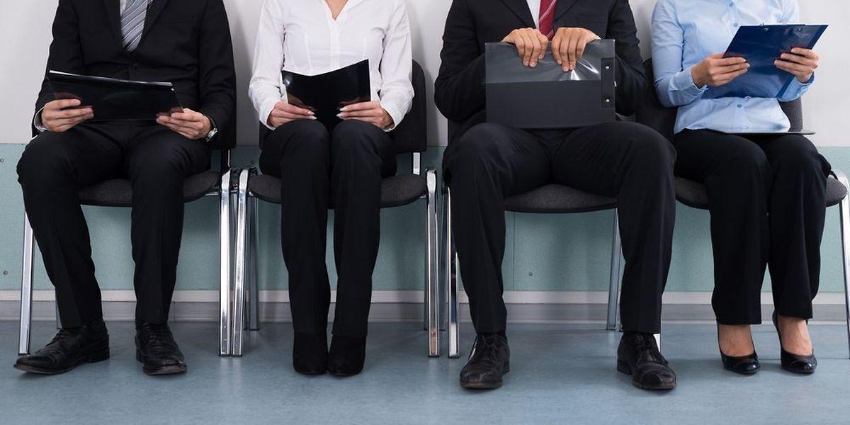 En 2016, les demandeurs d'emploi de niveau de formation supérieur représentent 19% de l'ensemble des jeunes à la recherche d'un travail.