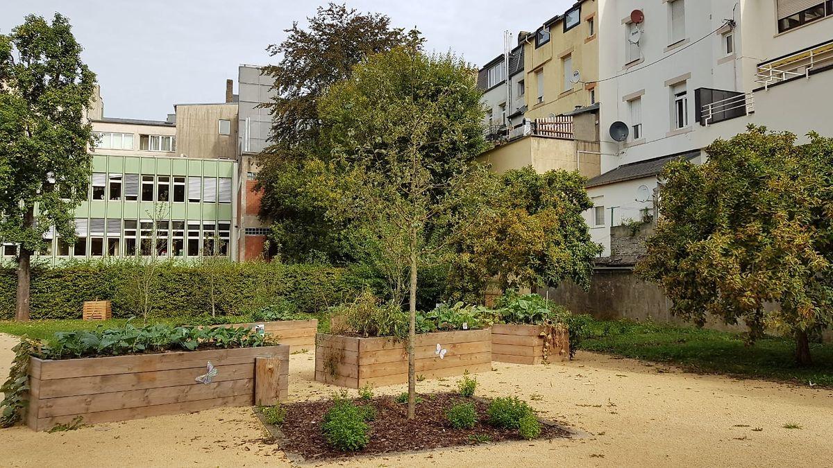 Der Cockerills Park befindet sich in einem Hinterhof am Boulevard Kennedy, in Höhe der Gebäude mit Nummer 118-120.