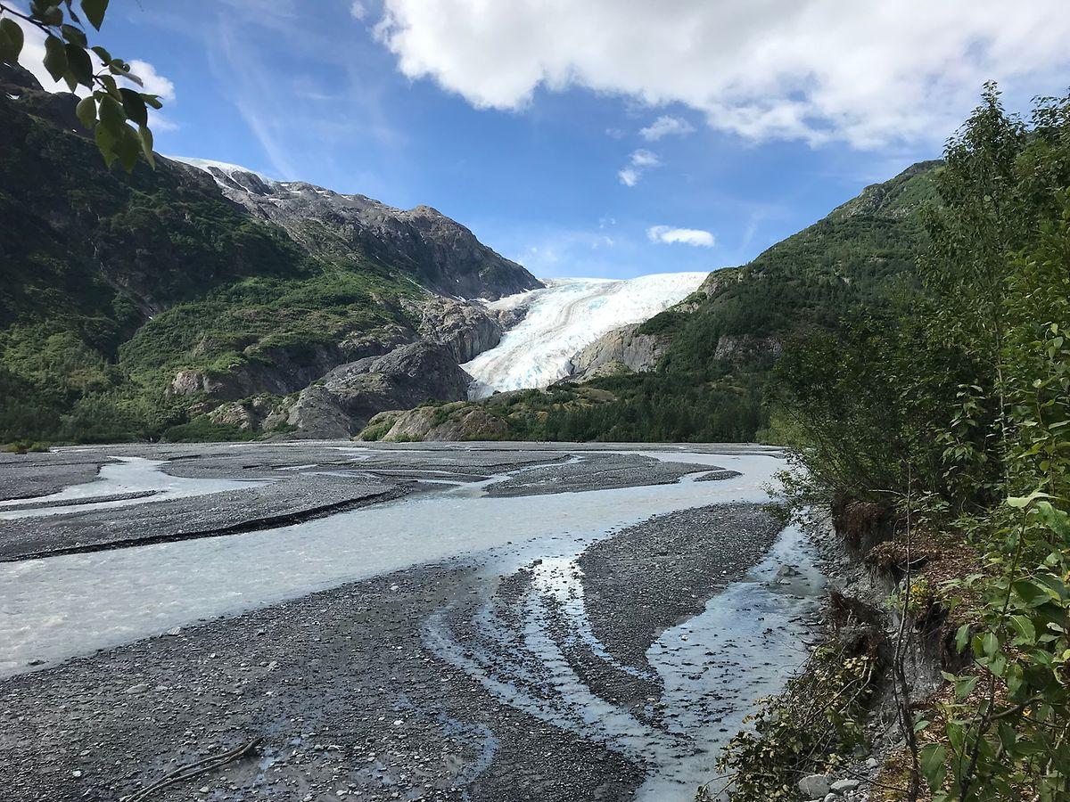 Der Exit Glacier liegt etwa 15 nordwestlich von Seward.