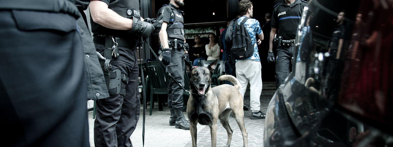 Das Bahnhofsviertel ist der Brennpunkt für Drogenvergehen schlechthin: Auf dem Gebiet der Hauptstadt hat die Polizei im Jahr 2018 insgesamt 1192 Taten verzeichnet.