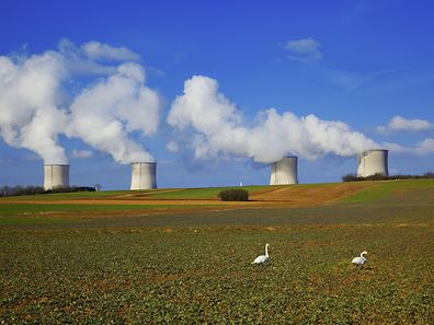 Blauer Himmel, fruchtbare Felder und viel Natur - dieses Bild will das Atomkraftwerk Cattenom zu seinem 30. Jahrestag vermitteln.