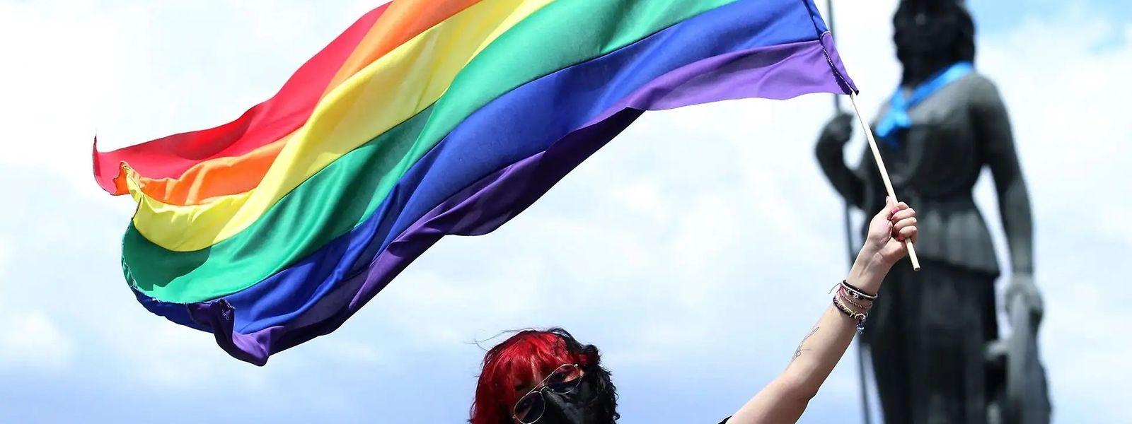 Le gouvernement hongrois essuie les critiques suite au vote d'une loi interdisant «la promotion» de l'homosexualité auprès des mineurs adolescents.