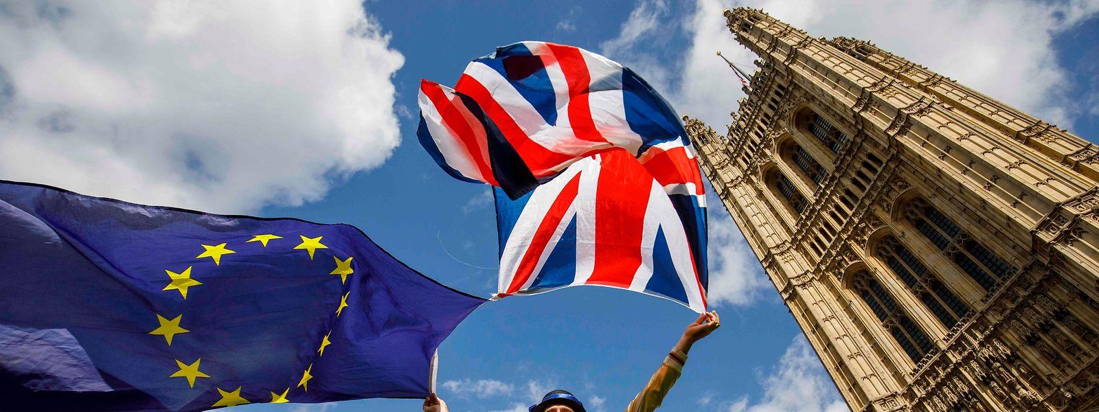 Vor dem Parlamentsgebäude machten am Montag pro-europäische Demonstranten ihrem Ärger Luft.