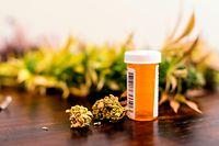Marijuana buds sitting next to prescription medicine bottle