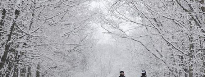 Les températures sont largement en dessous de 0°C au Canada et, dans une moindre mesure, dans le Midwest et le nord-est des Etats-Unis.