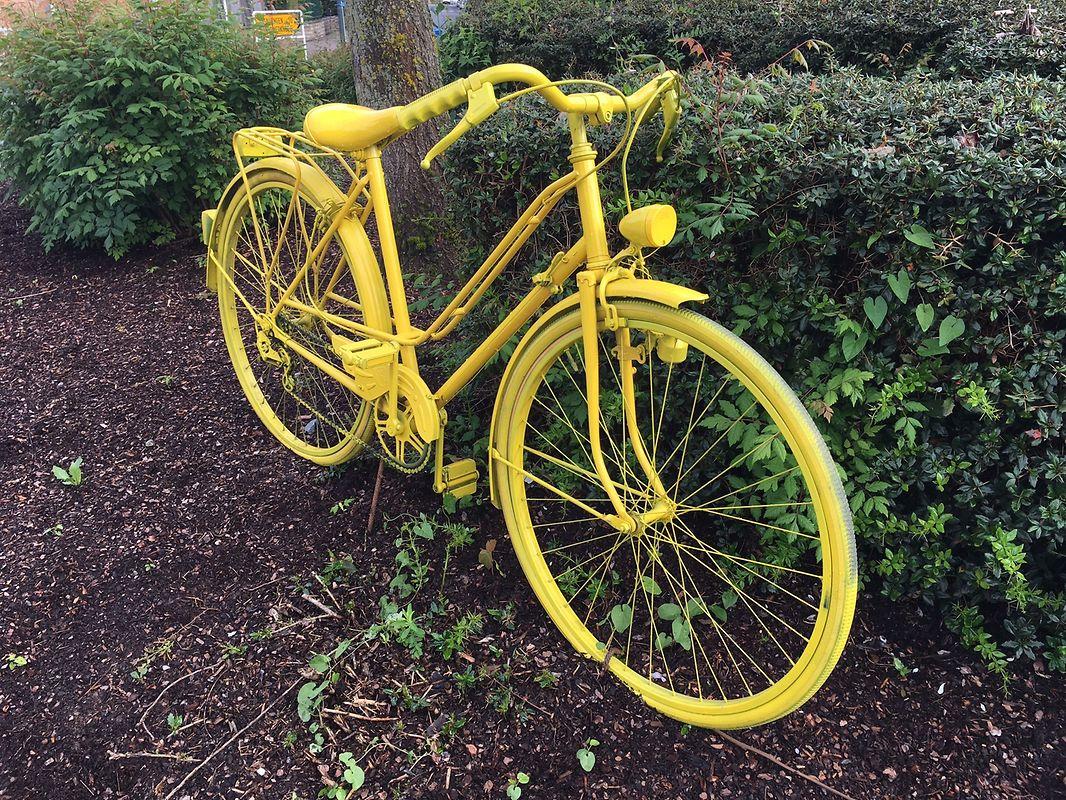 Auch das gelbe Rad darf nicht fehlen.