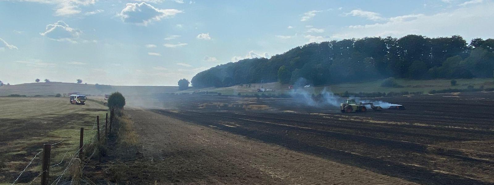 In Rippweiler brannte es in einem Feld.