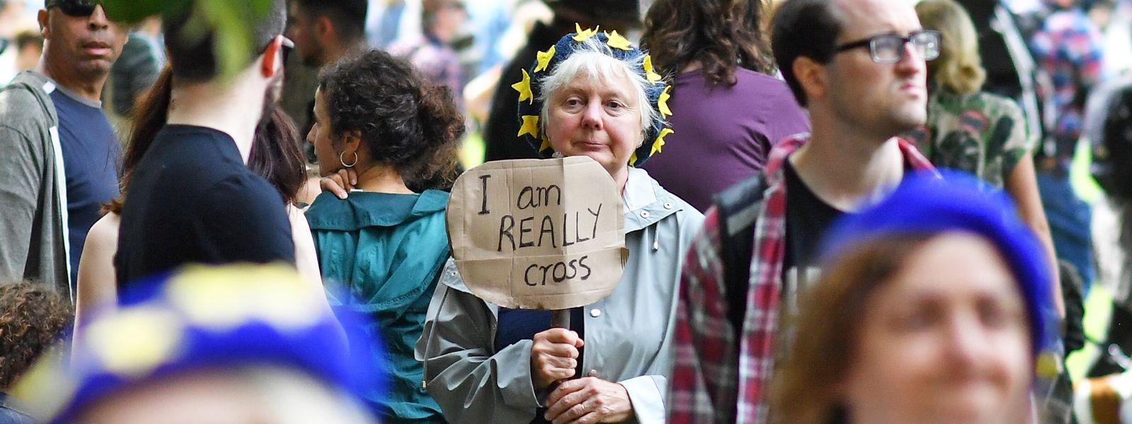 Viele gingen am Samstag auf die Straßen Londons, um ihre Meinung gegen das Vorhaben von Boris Johnson zu äußern.