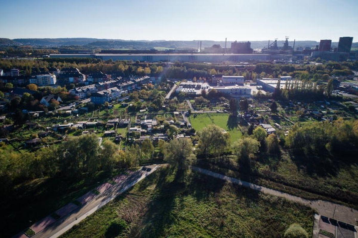 Am Standort Elsebrich, werden die Schrebergärten dem Südspidol weichen müssen.
