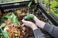 Hands,Holding,Compost,Above,The,Composter,With,Organic,Waste