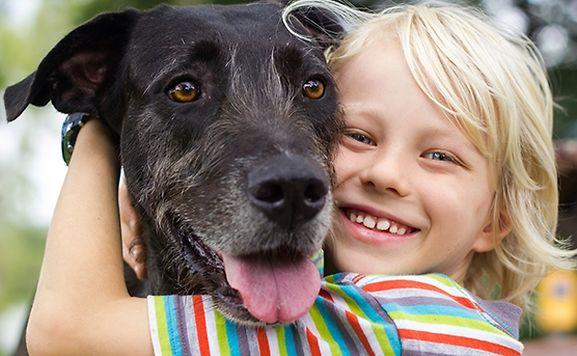Un chien peut procurer un soutien de qualité à un enfant stressé, selon une nouvelle étude américaine.