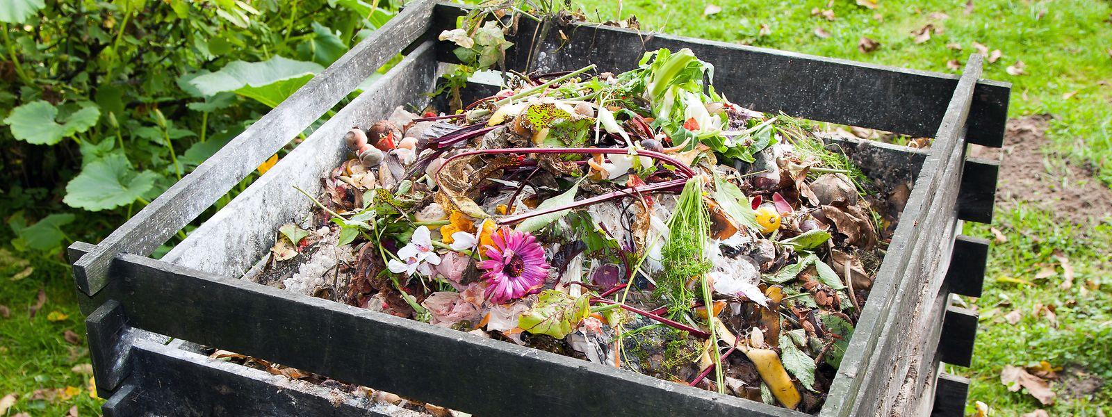 Dünger muss man nicht immer kaufen, man kann ihn auch im eigenen Garten selber machen.