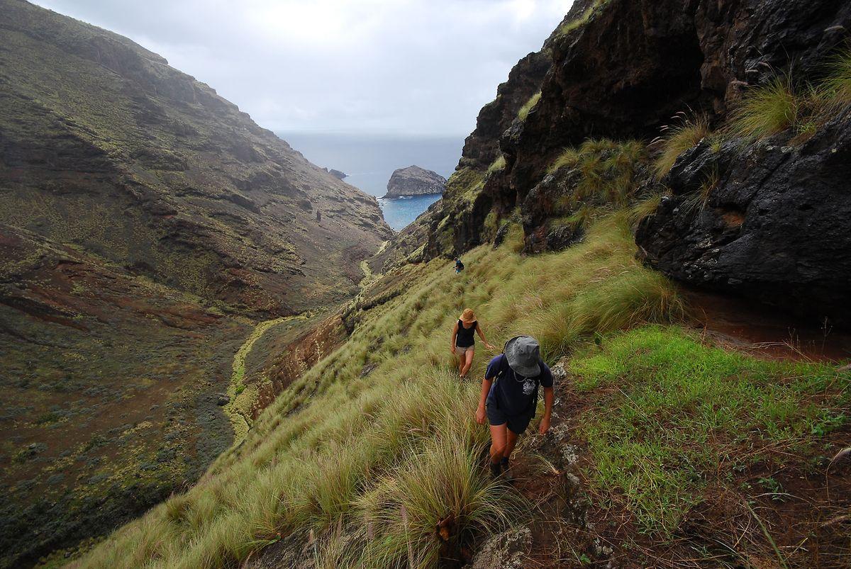 Wer auf Saint Helena in der Natur wandern geht, erlebt wohltuende Einsamkeit.