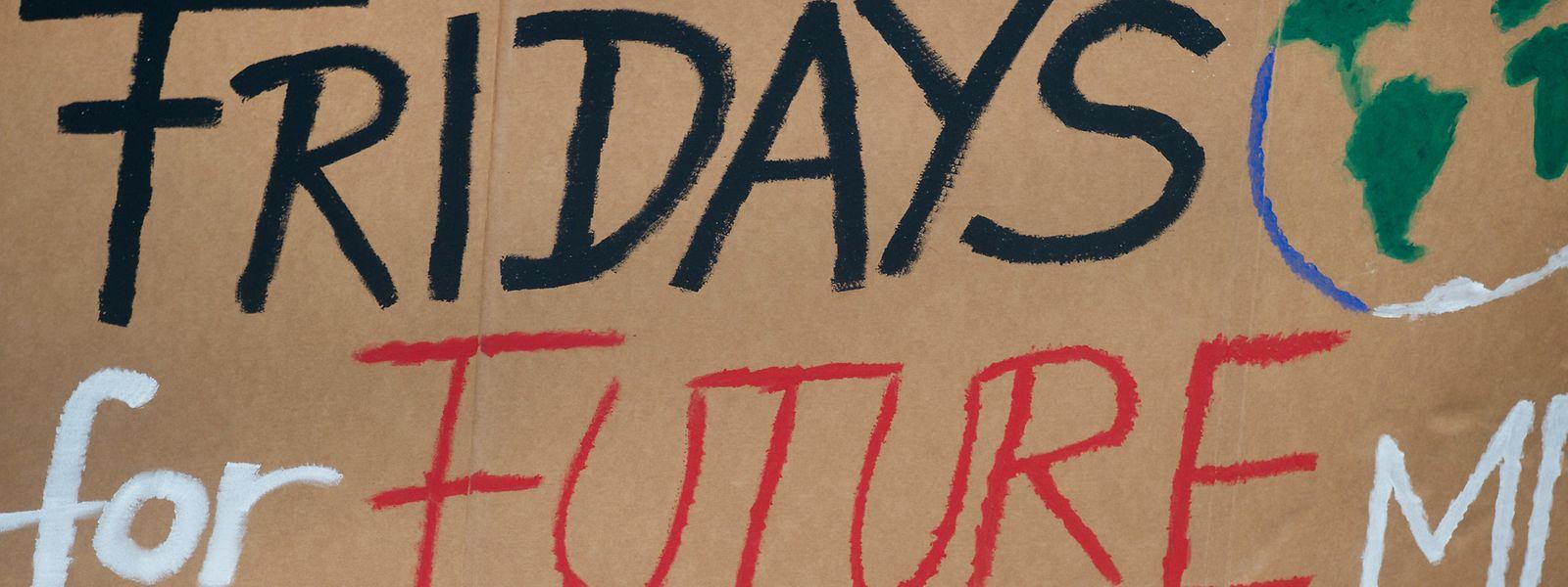 """Die 16-jährige Aktivistin Greta Thunberg ist für vielerlei Jugendliche eine Inspiration. Sie hat unter anderem den Spruch """"Fridays for Future"""" ins Leben gerufen. Weltweit ziehen nun junge Menschen für den Klimaschutz mit Plakaten durch die Städte."""