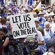 Die Demonstranten fordern eine Abstimmung über die endgültige Fassung des Abkommens zwischen dem Vereinigten Königreich und der EU.