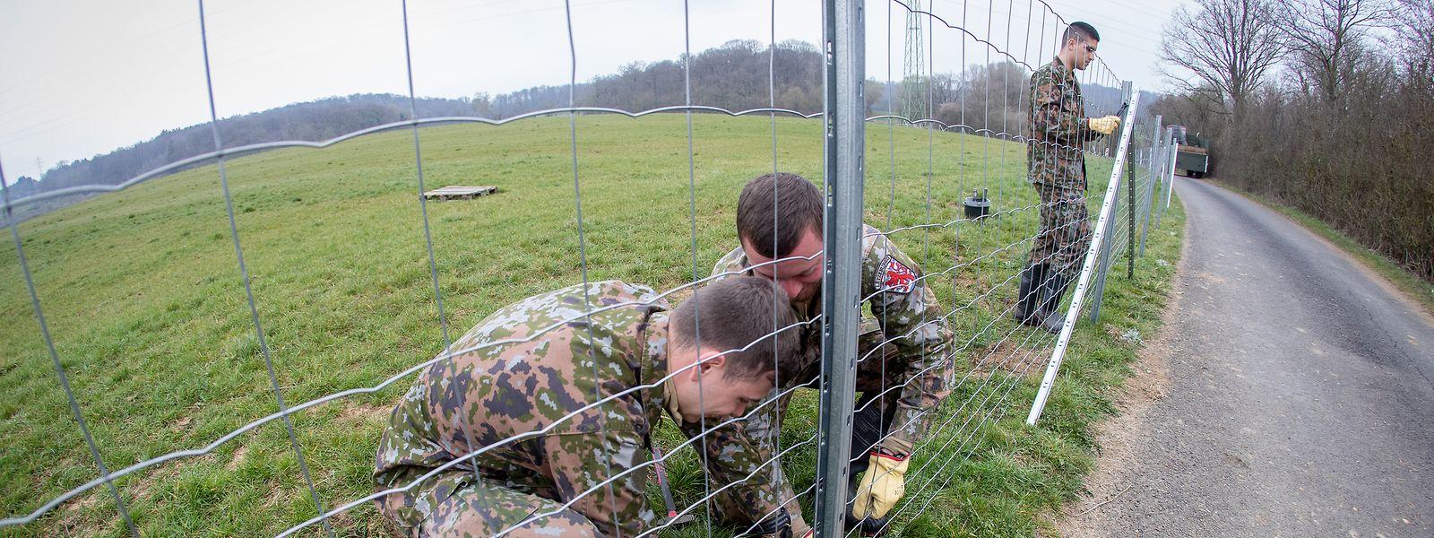Ein Kilometer Zaun ist bisher geschafft, acht sollen es insgesamt werden.