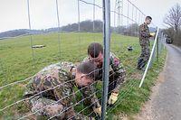 Der Schutzzaun gegen die Schweinepest soll rund 8 Kilometer lang werden.